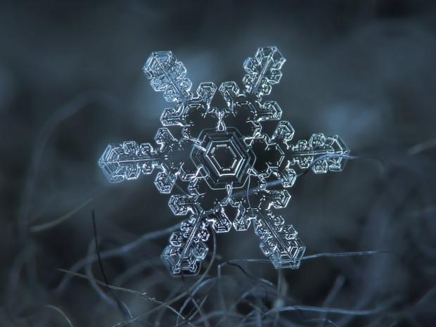 تصاویر ماکرو برف