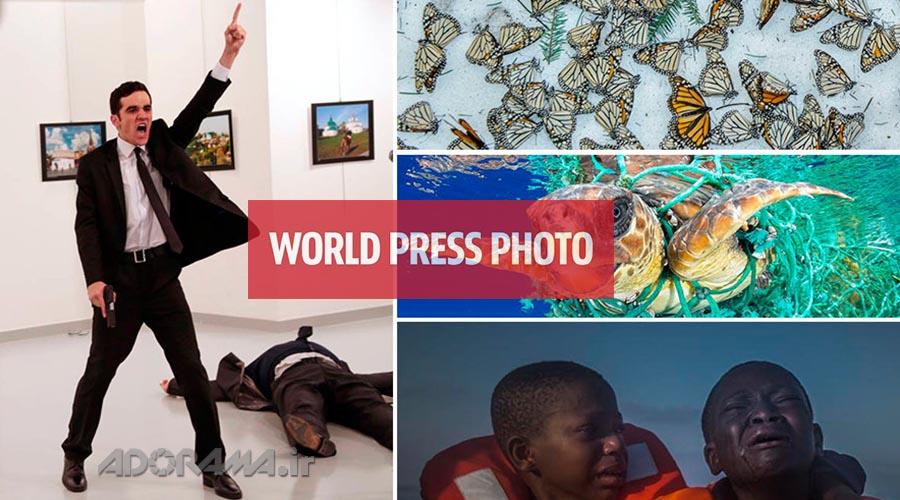 World Press Photo