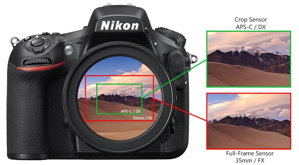 -%d9%85%d9%86%d8%aa%d8%ae%d8%a8-%d8%b3%d8%b1%d8%af%d8%a8%db%8c%d8%b1, learning-blog Nikon FX and DX Sensor - تاثیر سنسور فول فریم و سنسور کراپ شده بر روی عکس و لنز